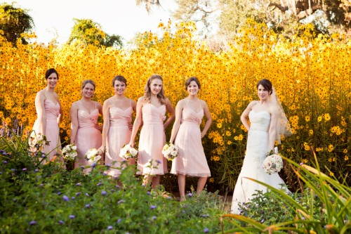 bride and bridesmaid in field of yellow daisies